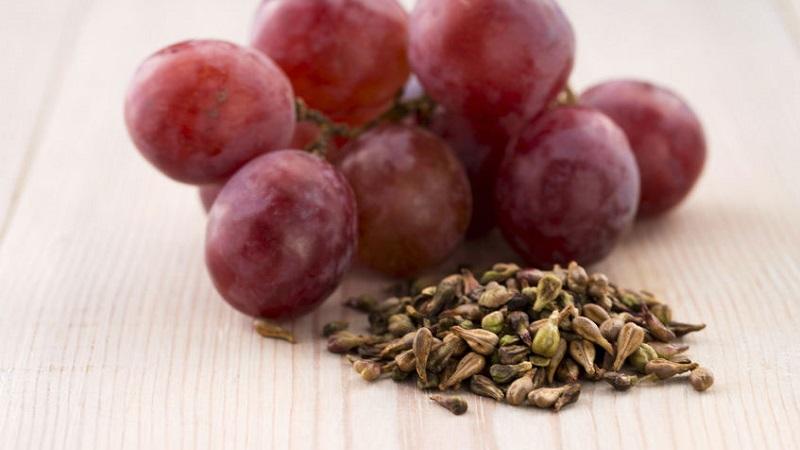 manfaat biji anggur, manfaat biji anggur merah, manfaat biji anggur untuk wajah, manfaat biji anggur untuk mata, manfaat biji anggur merah untuk kesehatan, manfaat biji anggur untuk kulit, manfaat biji anggur hitam, manfaat biji anggur merah bagi kesehatan, manfaat biji anggur bagi tubuh, manfaat biji anggur adalah, manfaat biji anggur apa, manfaat biji anggur untuk apa, apa manfaat biji anggur untuk kecantikan kulit, manfaat air biji anggur, manfaat air biji anggur untuk kecantikan, apa manfaat minyak biji anggur untuk kulit, manfaat biji anggur bagi kesehatan, manfaat biji anggur bagi ibu hamil, manfaat biji anggur buat kulit, manfaat biji buah anggur merah, manfaat buah anggur tanpa biji, khasiat biji anggur, manfaat biji anggur untuk kesehatan, biji anggur manfaatnya, manfaat biji anggur dan khasiatnya, manfaat biji anggur bila dimakan, manfaat kulit dan biji anggur, kandungan dan manfaat biji anggur, manfaat dan kegunaan biji anggur, khasiat dan manfaat biji anggur